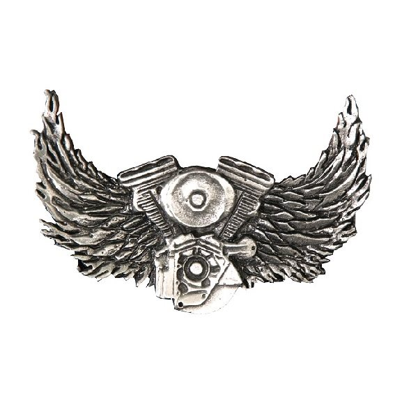 Motor And Wings Pin.