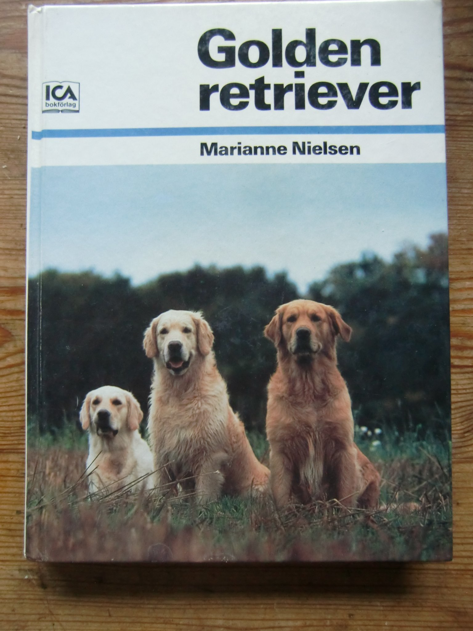 NIELSEN, MARIANNE: Golden retriever.