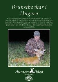 Brunstbockar i Ungern Jakt - Settern - Hunters Video -
