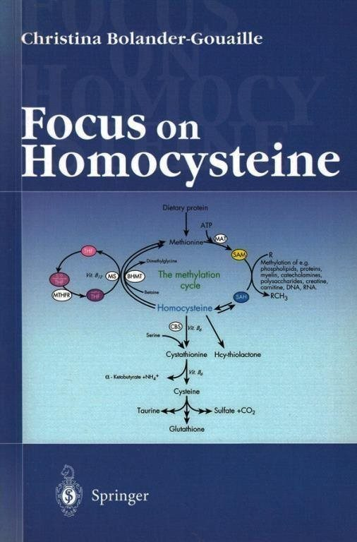 Focus on homocysteine, Christina Bolander Gouaille