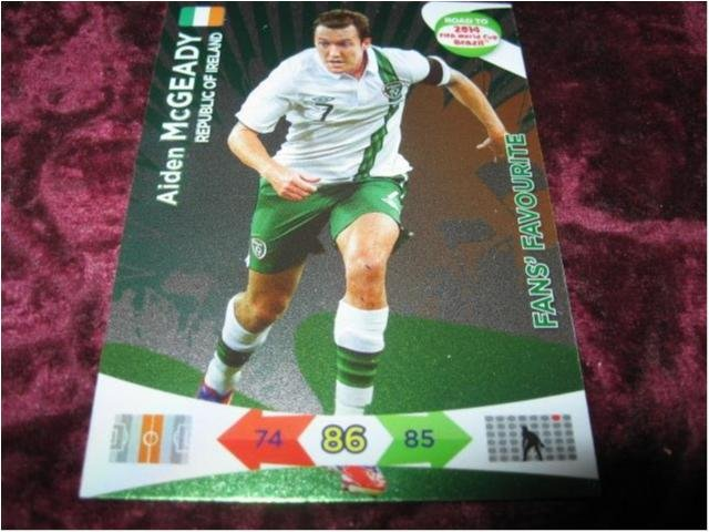 AIDEN MCGEADY-IRLAND(REPUBLIC OF IRELAND)-FANS FAVOURITE-ROAD TO 2014 FIFA WORLD