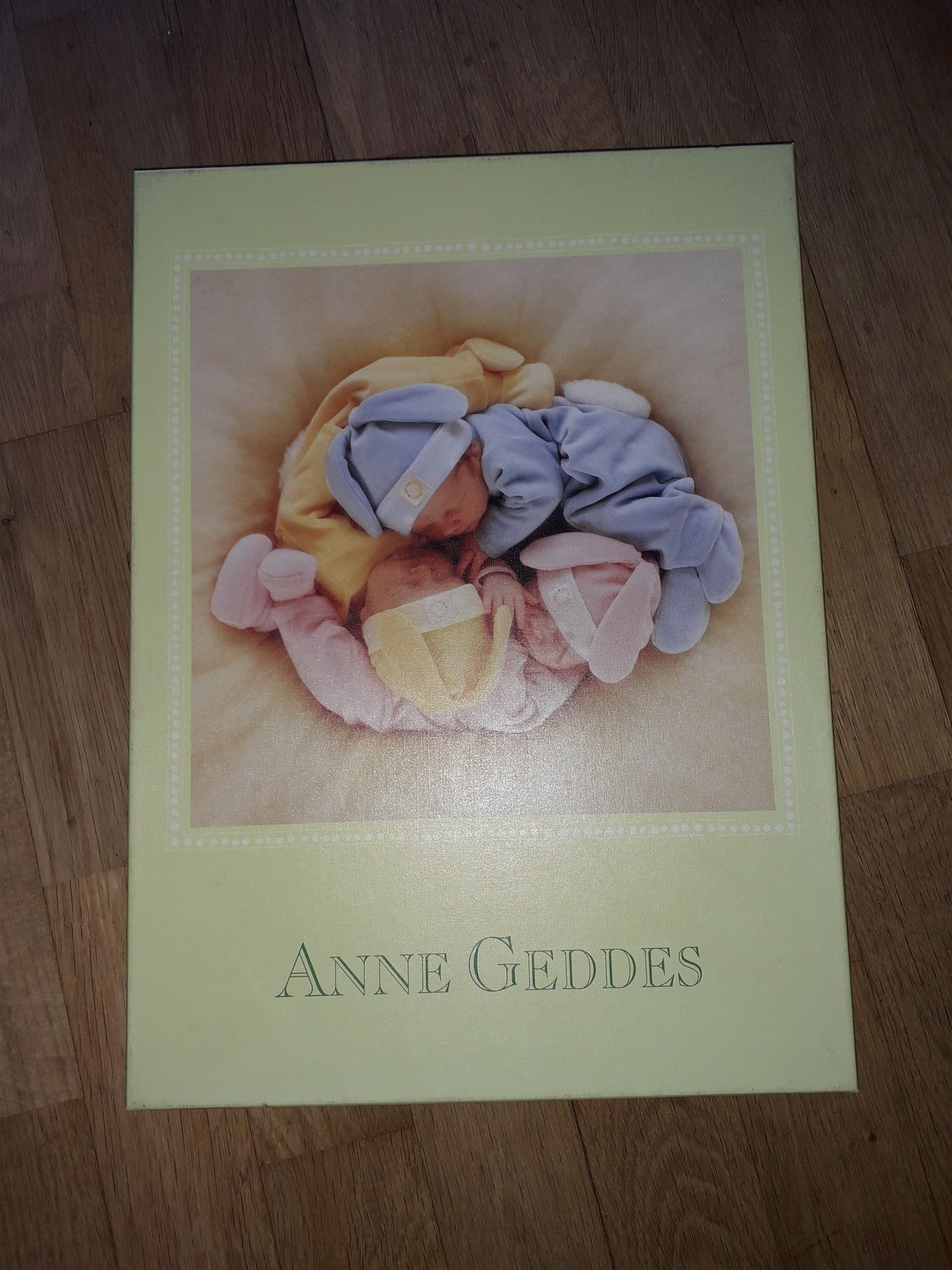 Pussel Anne Geddes 1000 bitar Schmidt 57968