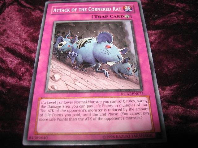 YU-GI-OH ATTACK OF THE CORNERED RAT RGBT-EN075