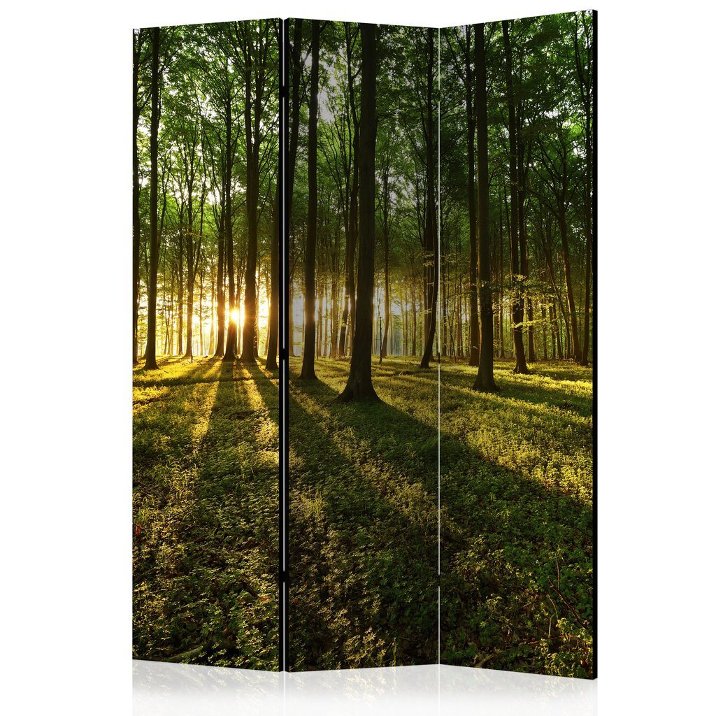 Rumsavdelare - Morning in the Forest Room Dividers 135x172