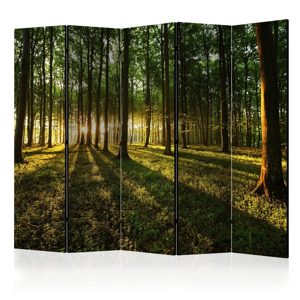 Rumsavdelare - Morning in the Forest II Room Dividers 225x17