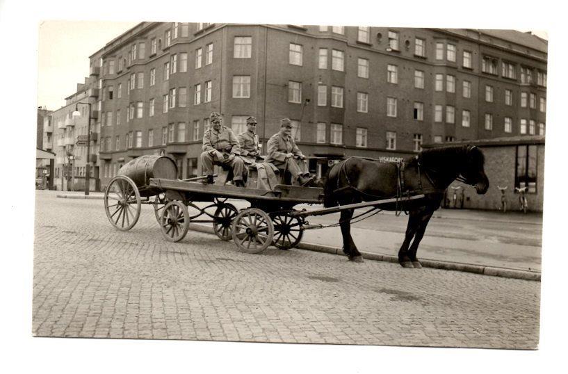 häst och vagn malmö