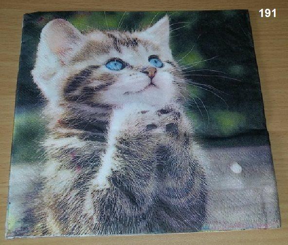 Servett söt katt nr 191 (304658657) ᐈ videobruden på Tradera 6c13974666d67