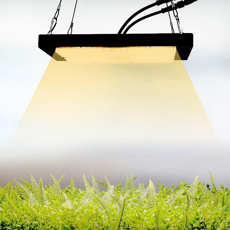 Växtlampa LED för odling 100W Full.. (401392970) ᐈ green