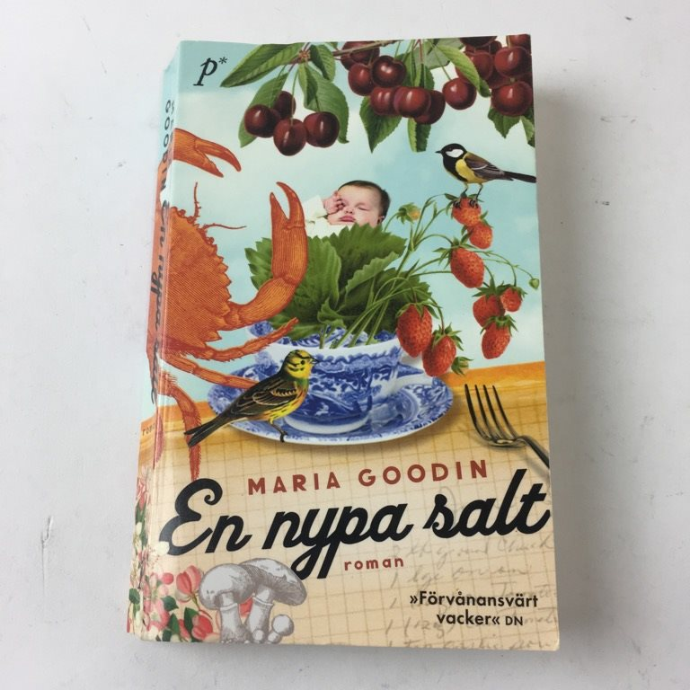 Bok, En nypa salt, Maria Goodin, Pocket, ISBN: 9789187343018, 2013