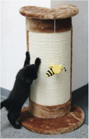 klösbräda för katt