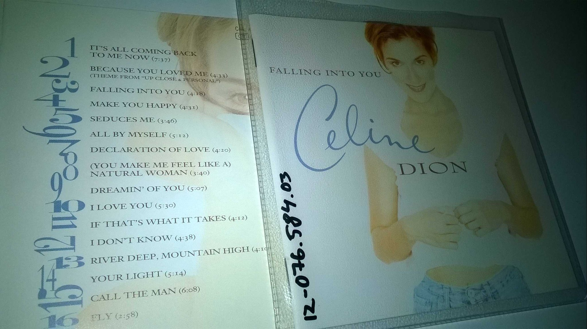 Celine Dion - Falling Into You, CD