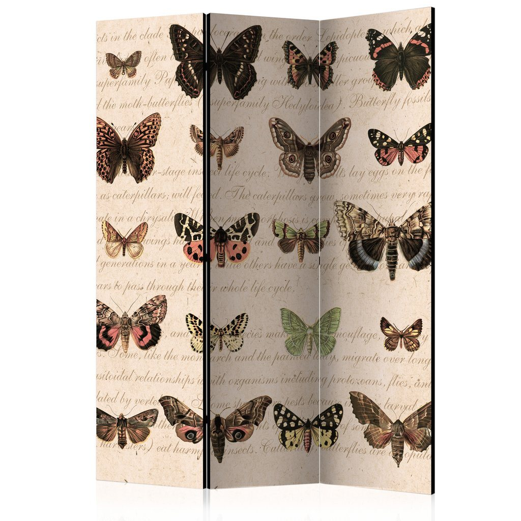 Rumsavdelare - Retro Style Butterflies Room Dividers 135x172