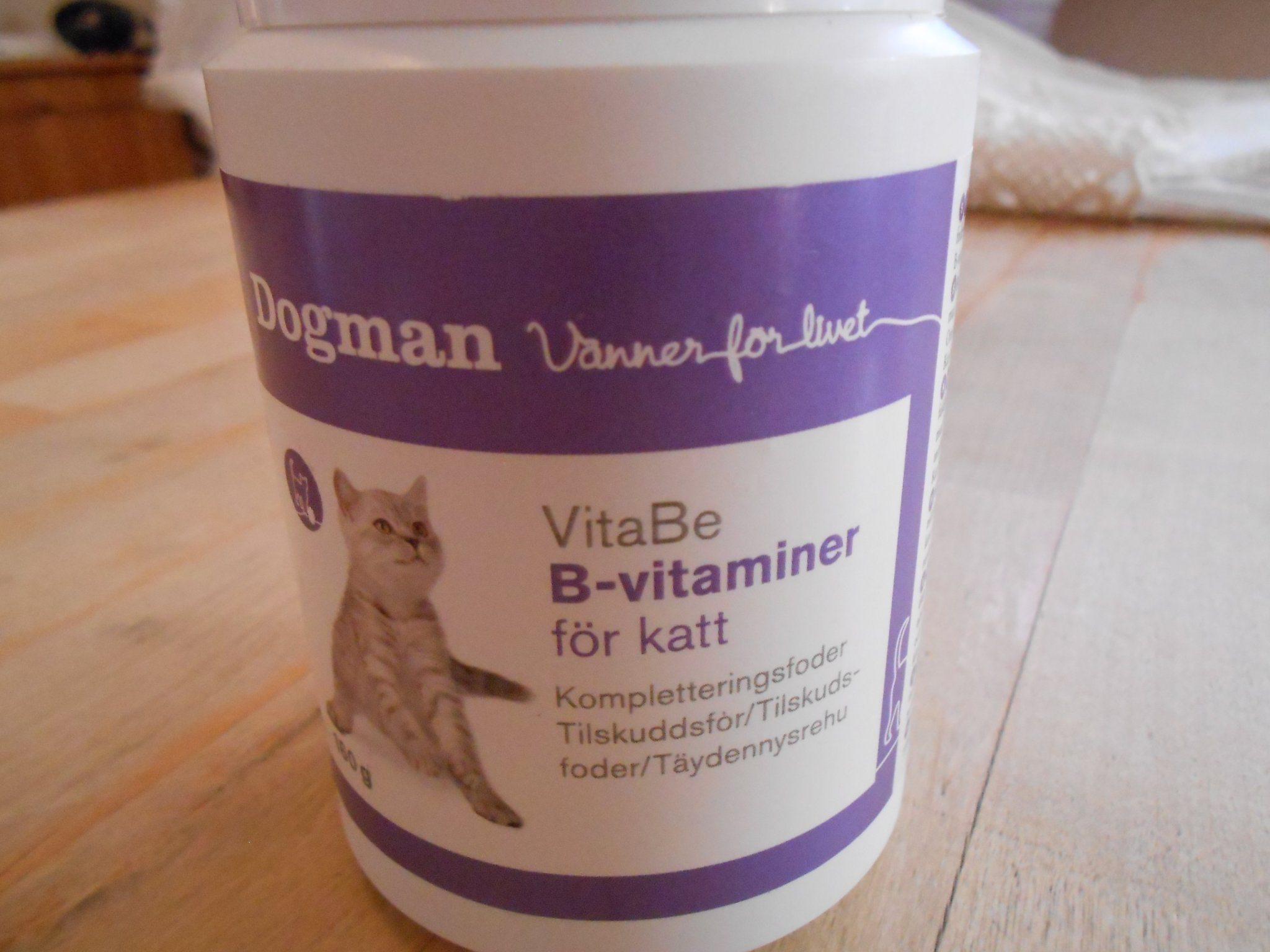 b vitaminbrist katt