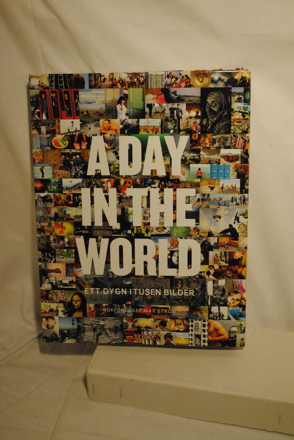 A day in the wold