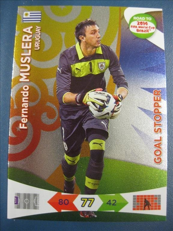 GOAL STOPPER   FERNANDO MUSLERA - URUGUAY - ROAD TO 2014 FIFA WORLD CUP BRAZIL