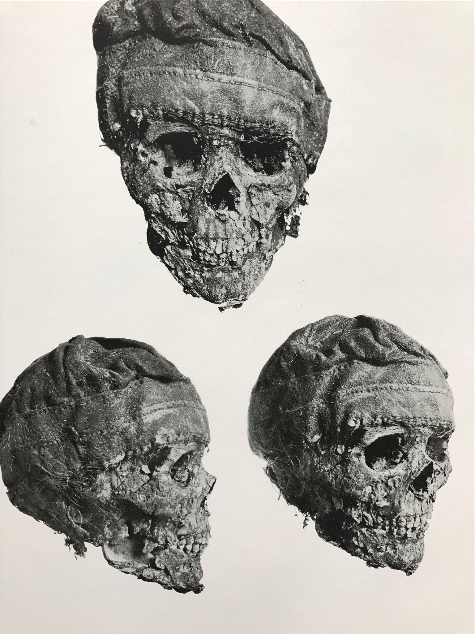 SAMER-RASBIOLOGI –ZUR OSTEOLOGIE DER LAPPEN [Om samer och skelettdelar] LAPPLAND