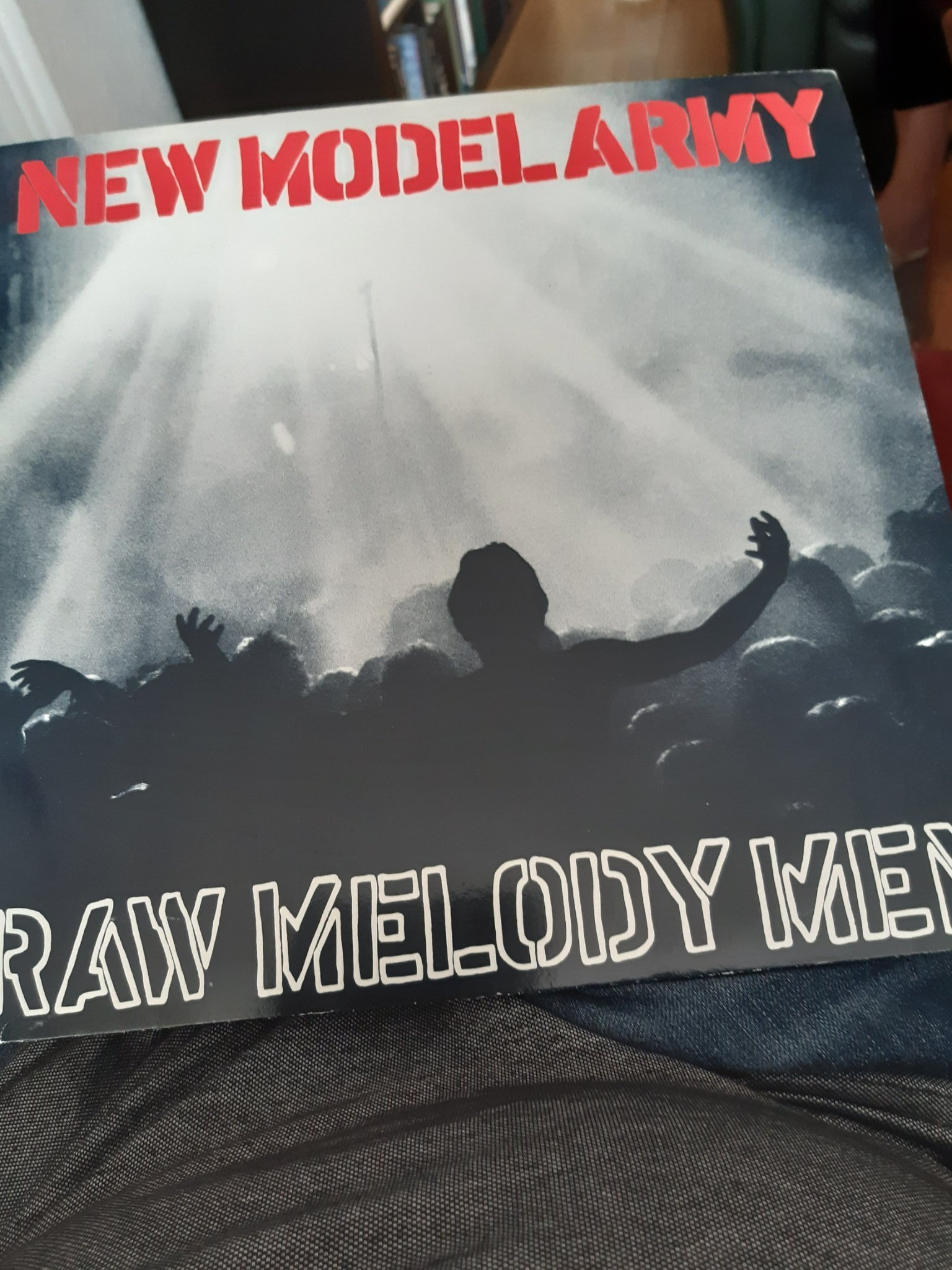 New Model Army, Raw Melody Men! Dubbel LP  (352884437) ᐈ