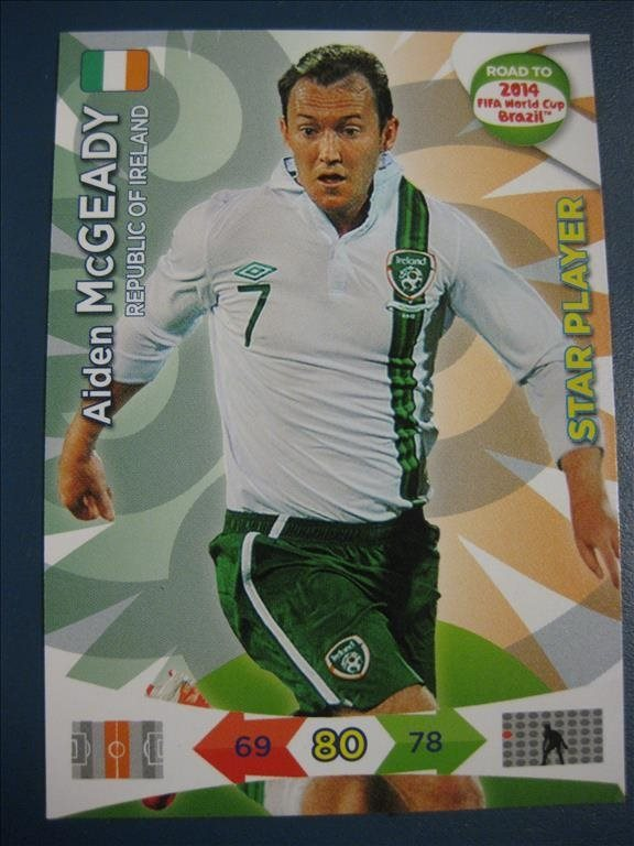 STAR PLAYER -   AIDEN MCGEADY - IRLAND - ROAD TO 2014 FIFA WORLD CUP BRAZIL