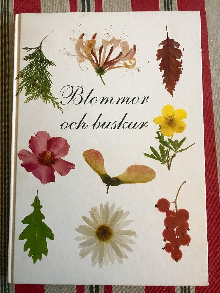 BLOMMOR OCH BUSKAR Bengt Persson 1997