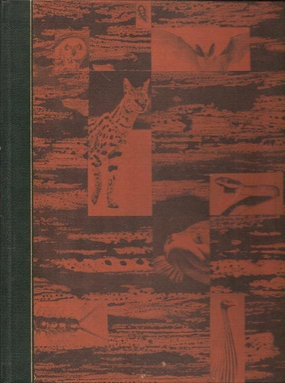 Karl P. Schmidt-Robert F. Inger: Reptiler.
