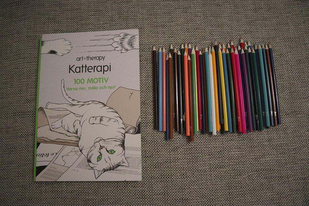 färgpennor målarbok för vuxna