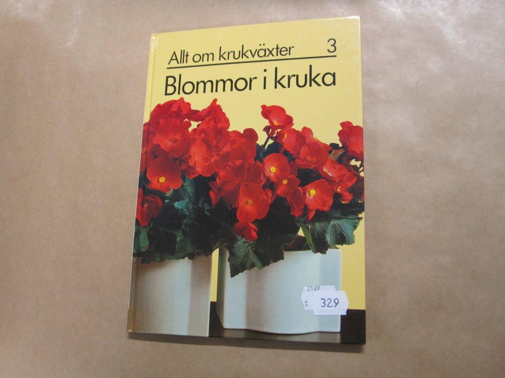 bilder på blommor i kruka