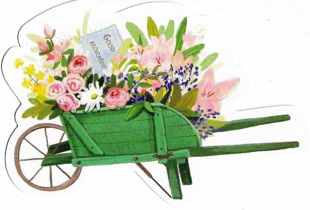 köpa blommor till trädgården