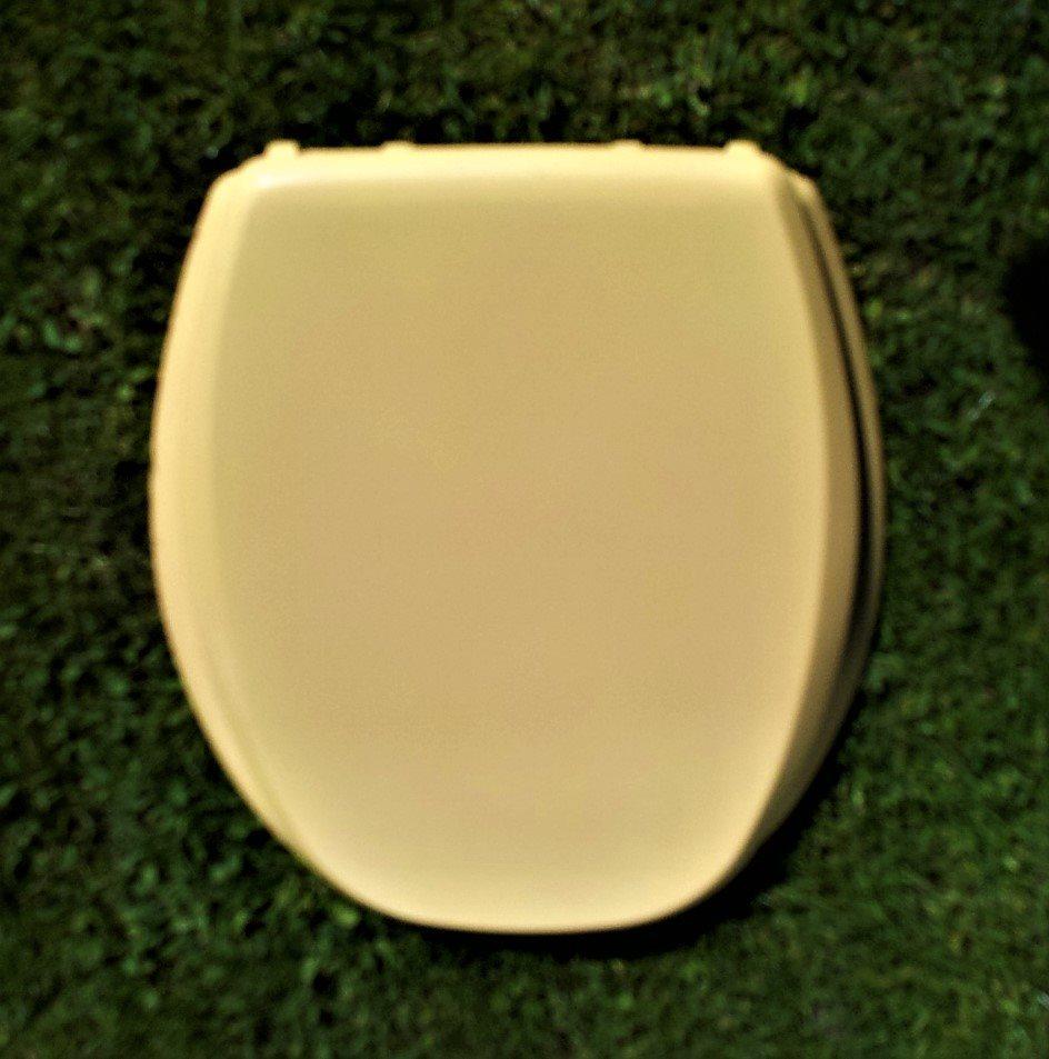 cur aqua toalettsits