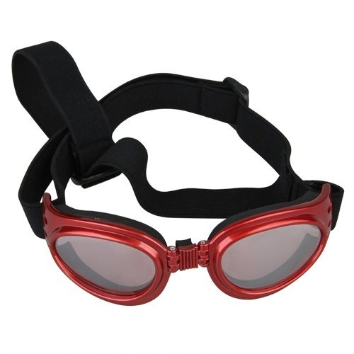 Glasögon För Hundar Goggles for Eye Protection
