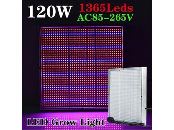 Växtlampa Växtbelysning Fullspektrum lampa LED 120W - Hong Kong - Växtlampa Växtbelysning Fullspektrum lampa LED 120W - Hong Kong