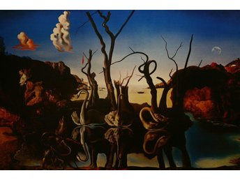 Poster / Salvador Dali / Swans reflecting Elephants