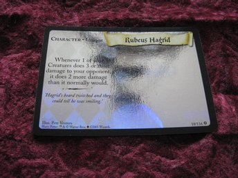 RUBEUS HAGRID RARE HOLOGRAM 18/116 (HARRY POTTER)