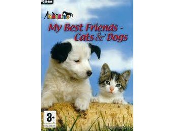 my best friend cats and dogs