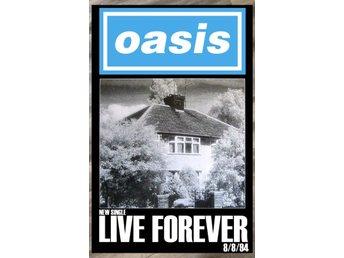 Forever Hut