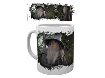 Mugg - Lord of the Rings - Gandalf