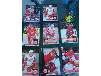 Donruss 1993/94 - Detroit Red Wings lot