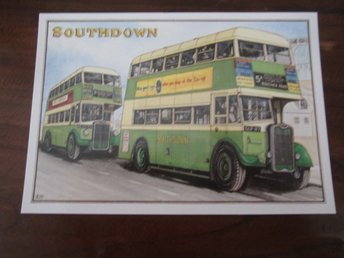 SET OF 4 POSTCARDS SOUTHDOWN BUSES AMBER PUBLISHED