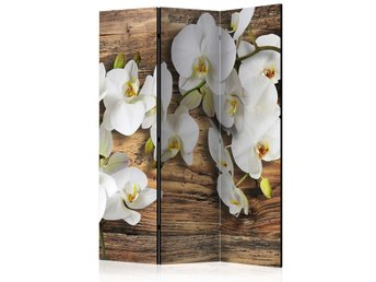 Rumsavdelare - Forest Orchid Room Dividers 135x172