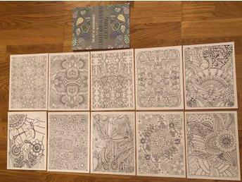 Målarbok Målarboksbilder Mindfulness Färgläg 364600963