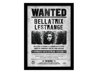 Harry Potter Bild Bellatrix Wanted 40 x 30