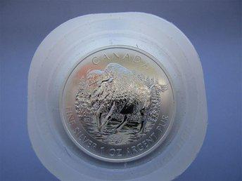 25 x 1 oz Wood Bison Wildlife Series 2013 Silvermynt Canada Silver ,9999 - Stockaryd - 25 x 1 oz Wood Bison Wildlife Series 2013 Silvermynt Canada Silver ,9999 - Stockaryd