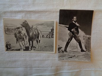 2st Alan Ladd- Postcards 1950-tal