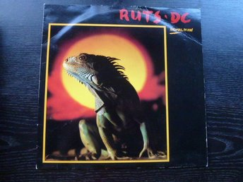 RUTS DC - Animal now  Virgin UK -81