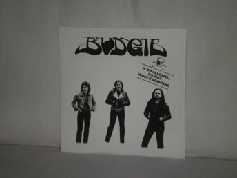 Budgie  -  If Swallowed Do Not Induce Vomiting           180G HEAVYWEIGHT - NY