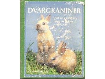 Monica Wegler: Dvärgkaniner. - Malmö - Monica Wegler: Dvärgkaniner. - Malmö