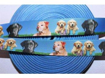 Hundar Labrador Retriver nyckel smycken rosetter band dekorera till fest ribbon - Skogås - Hundar Labrador Retriver nyckel smycken rosetter band dekorera till fest ribbon - Skogås