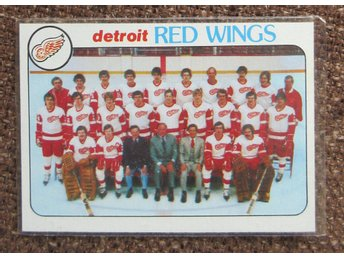 *** TOPPS 1978 - DETROIT RED WINGS - checklist # 197 ***