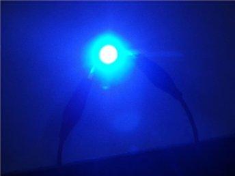 Javascript är inaktiverat. - Nybro - BLÅ LED Lampa 2st T10 W5W 12V 2st blåa LED lampor med fäste T10 W5W 12V Passar till många bilar som nummerplåtsbelysning, parkeringsljus mm Vid överföring inom 3 dagar till mitt bank-konto lämnar jag 5 Kronor tillbaka på frakten. - Nybro