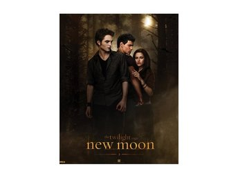 Twilight - New Moon - Woods