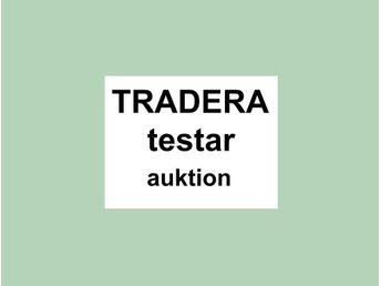 Test auction, swedish description world